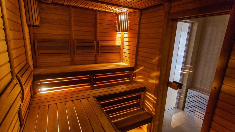Magiczna strefa saun. Jaką saunę wybrać dla siebie?